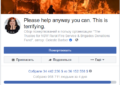 Пожары в Австралии: пожертвовать на спасение животных