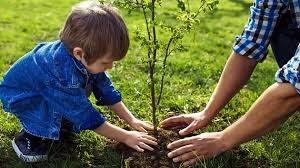 До 22 июня 2020 года продлится Международная акция «Сад памяти»
