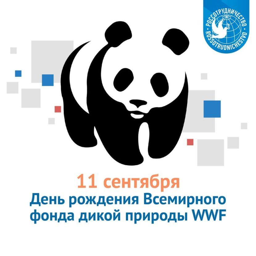 11 сентября — День рождения Всемирного фонда дикой природы